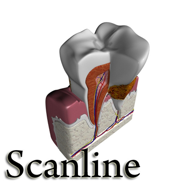 diş diş plakası yüksək ətraflı 3d modeli 3ds max fbx obj 130071