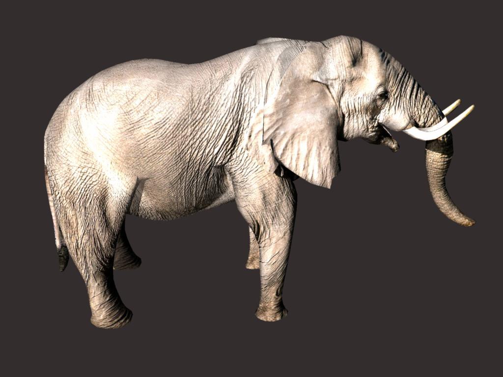 африкански слон 3d модел 3ds dxf fbx dae obj 132292