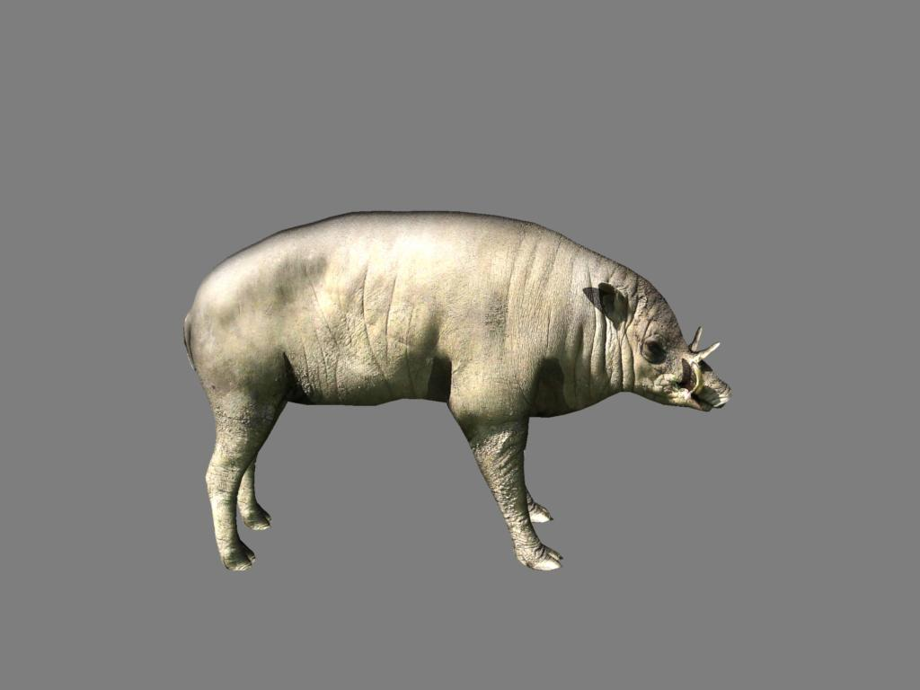 babirusa 3d model 3ds dxf dae obj 132379