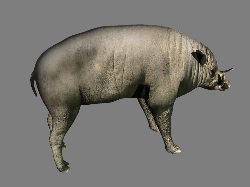 babirusa 3d model 3ds dxf dae obj 132384