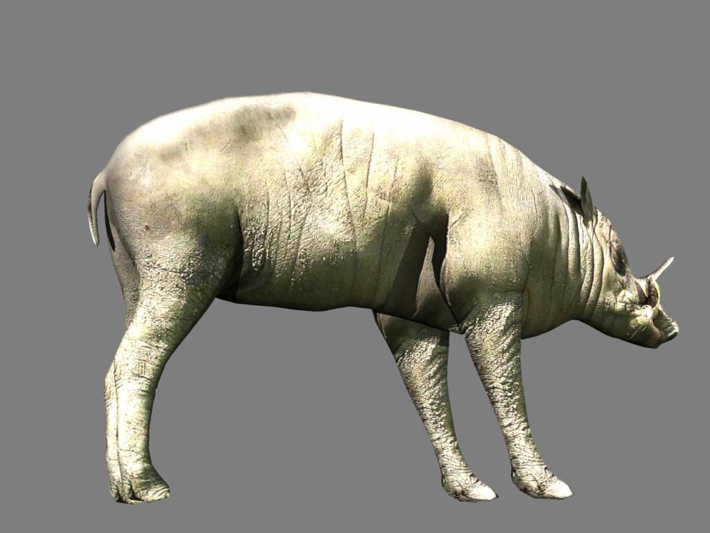 babirusa 3d model 3ds dxf dae obj 132385
