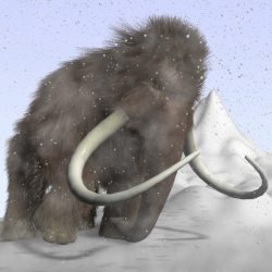 Cartoon Mammoth Rigged ( 766.43KB jpg by supercigale )