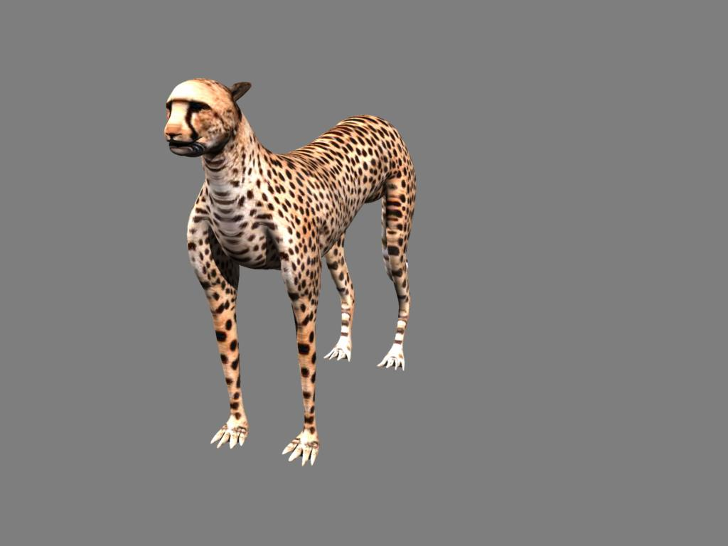 cheetah 3d model obj 132628