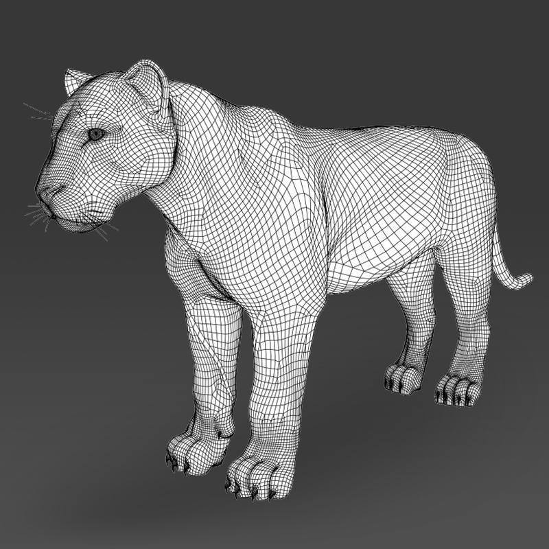 reāls balts tīģeris 3d modelis 3ds max fbx c4d lwo ma mb obj 161337