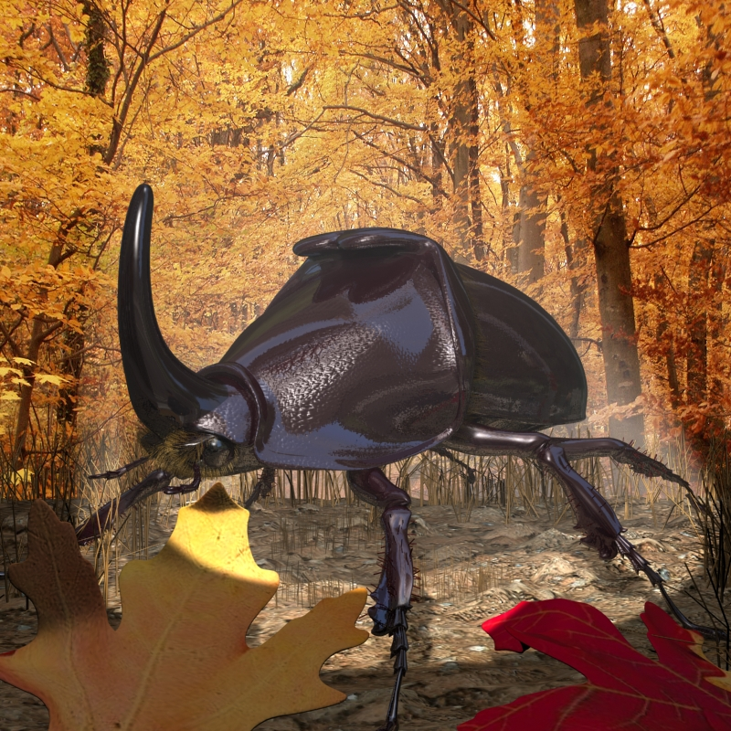 rhinoceros beetle rigged 3d model 3ds max fbx lwo obj 120228