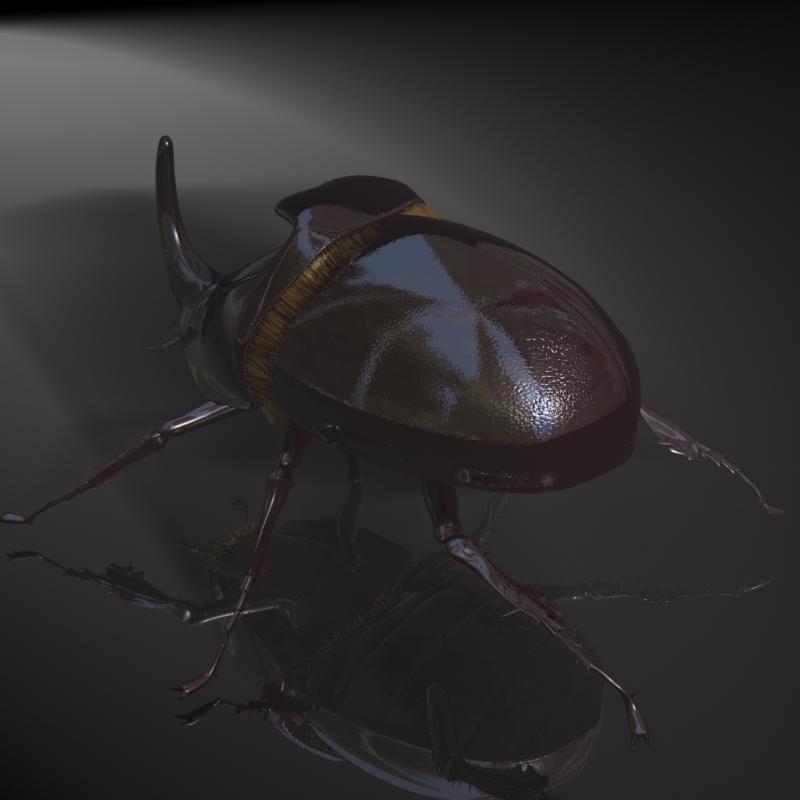 rhinoceros beetle rigged 3d model 3ds max fbx lwo obj 120232