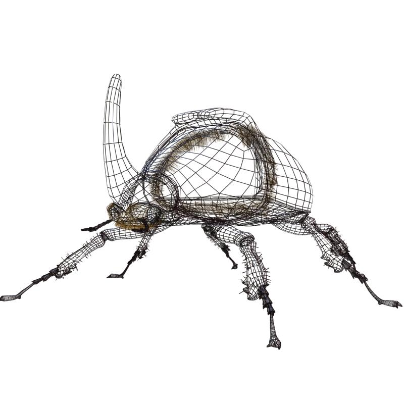 rhinoceros beetle rigged 3d model 3ds max fbx lwo obj 120233