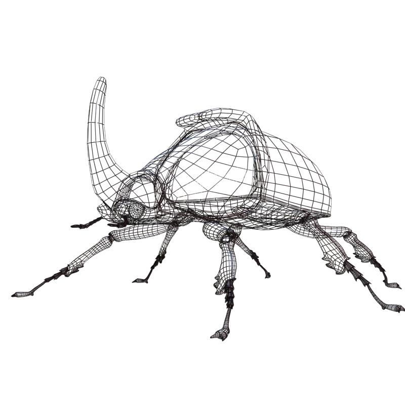 rhinoceros beetle rigged 3d model 3ds max fbx lwo obj 120234