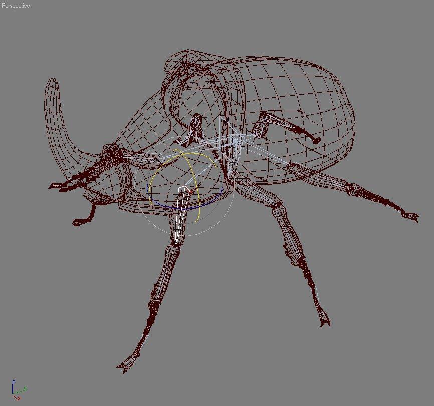 rhinoceros beetle rigged 3d model 3ds max fbx lwo obj 120235