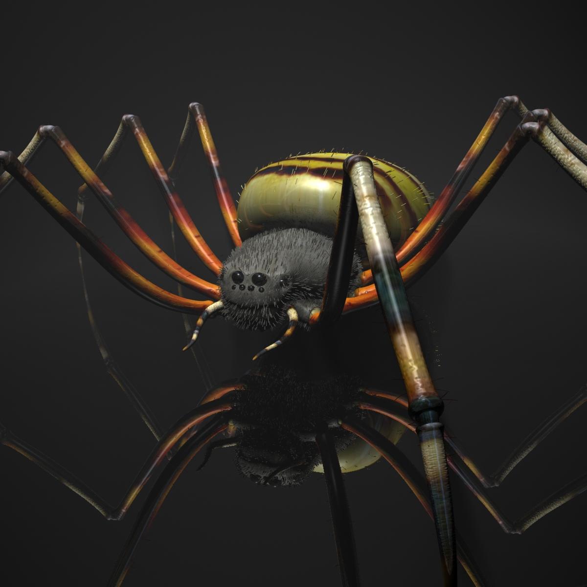 spider tiger opremljen 3d model max fbx obj 160768
