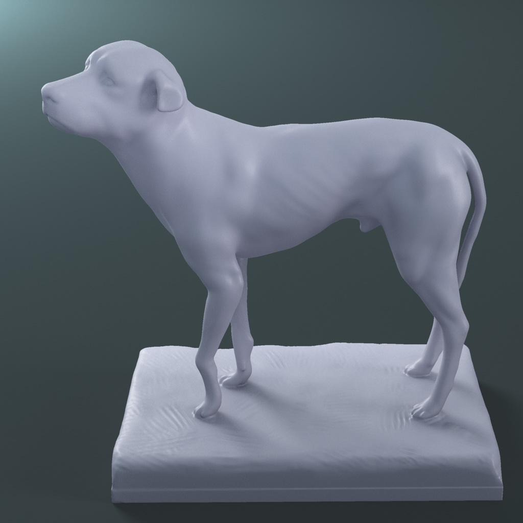 the lost dog statue (printable stl collada) 3d model max fbx dae ma mb  121595