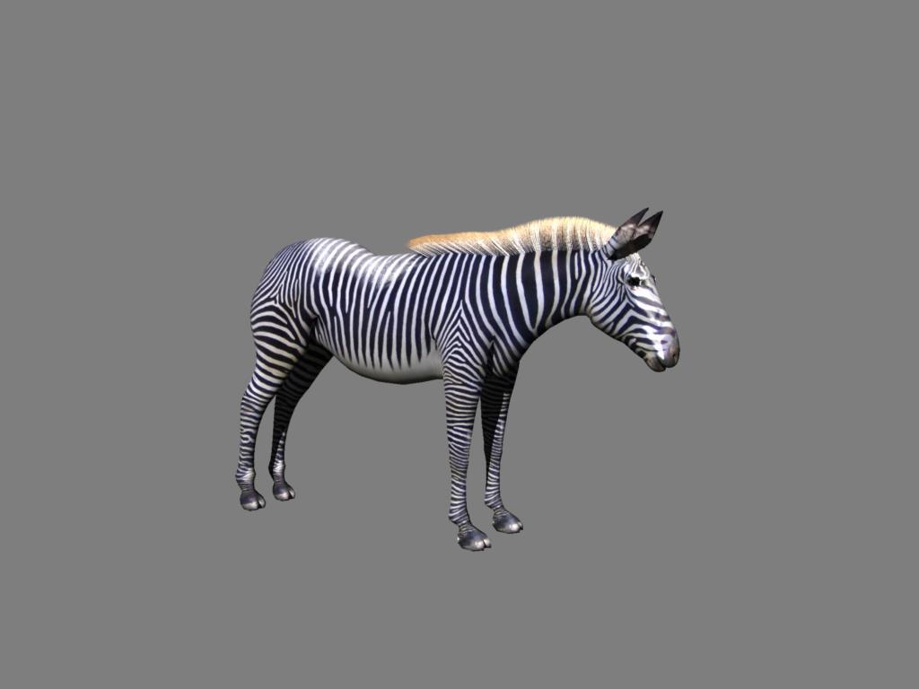 zebra v2 3d modelis 3ds obj 132774