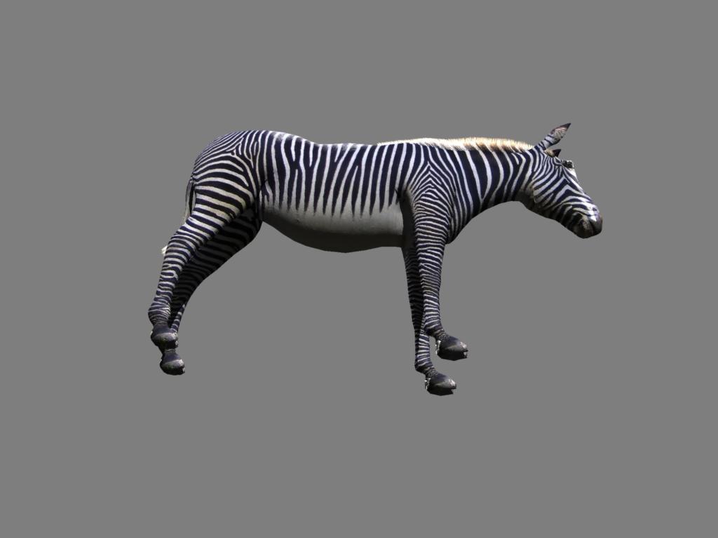 zebra v2 3d modelis 3ds obj 132777