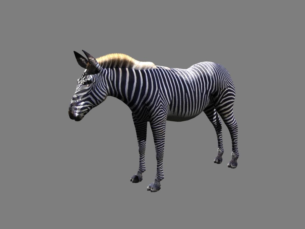 zebra v2 3d modelis 3ds obj 132778