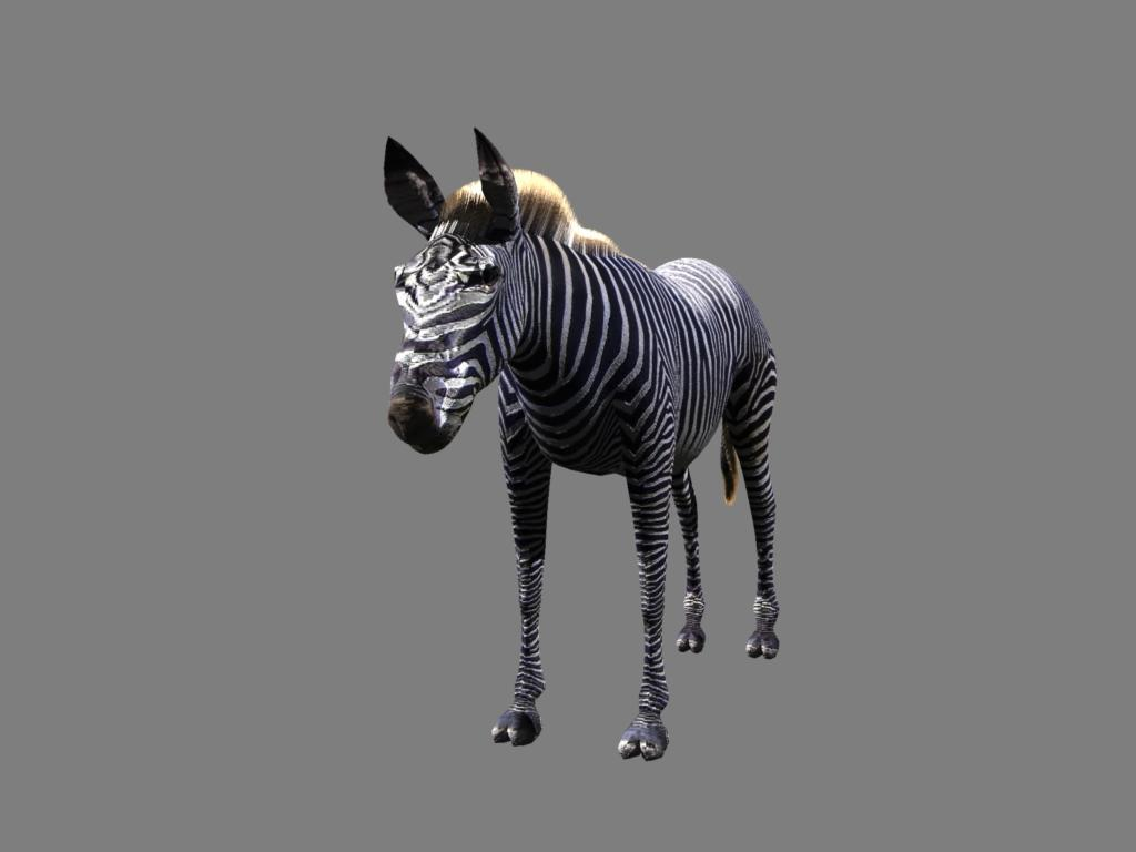 zebra v2 3d modelis 3ds obj 132779