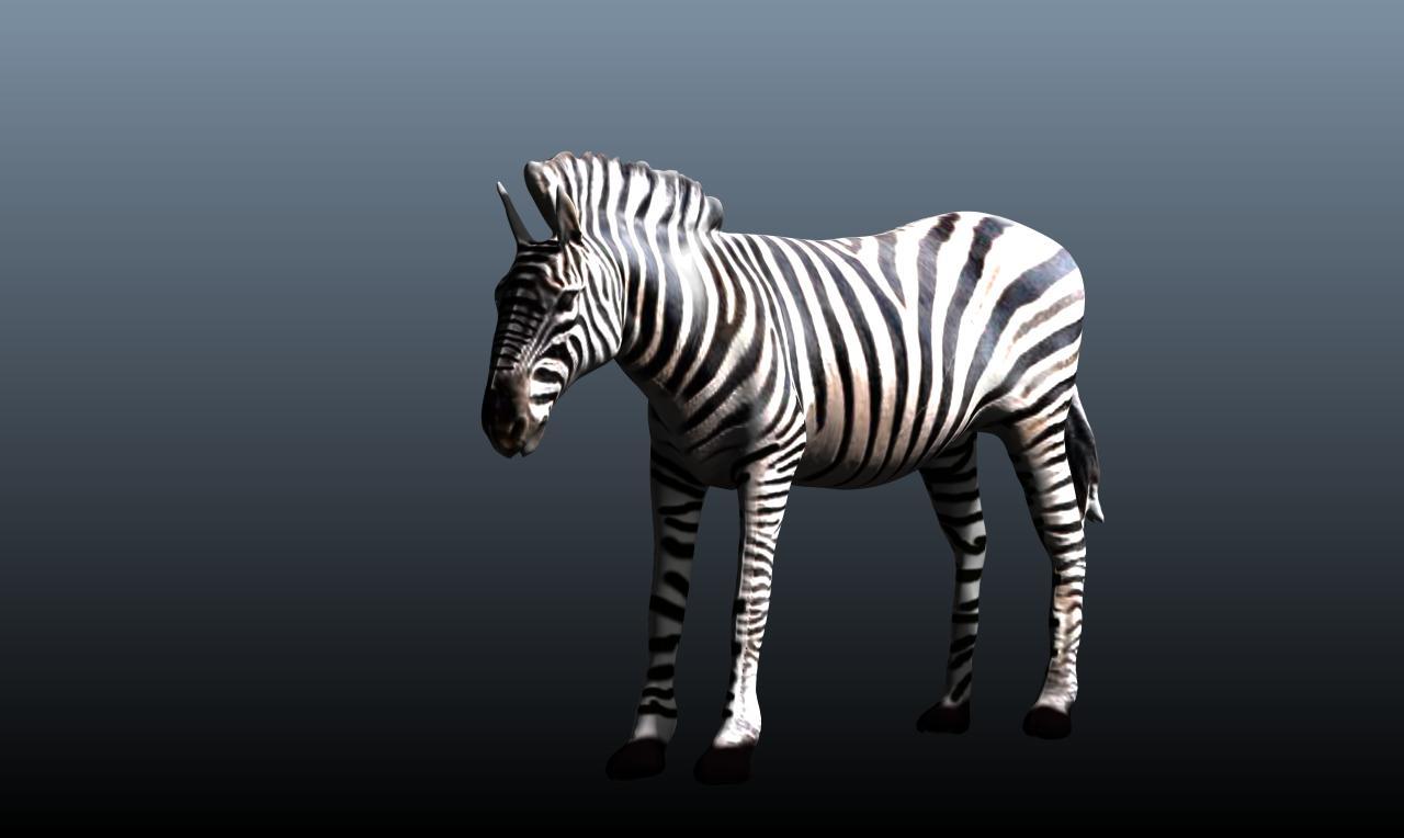 zebra v3 3d model obj 148212