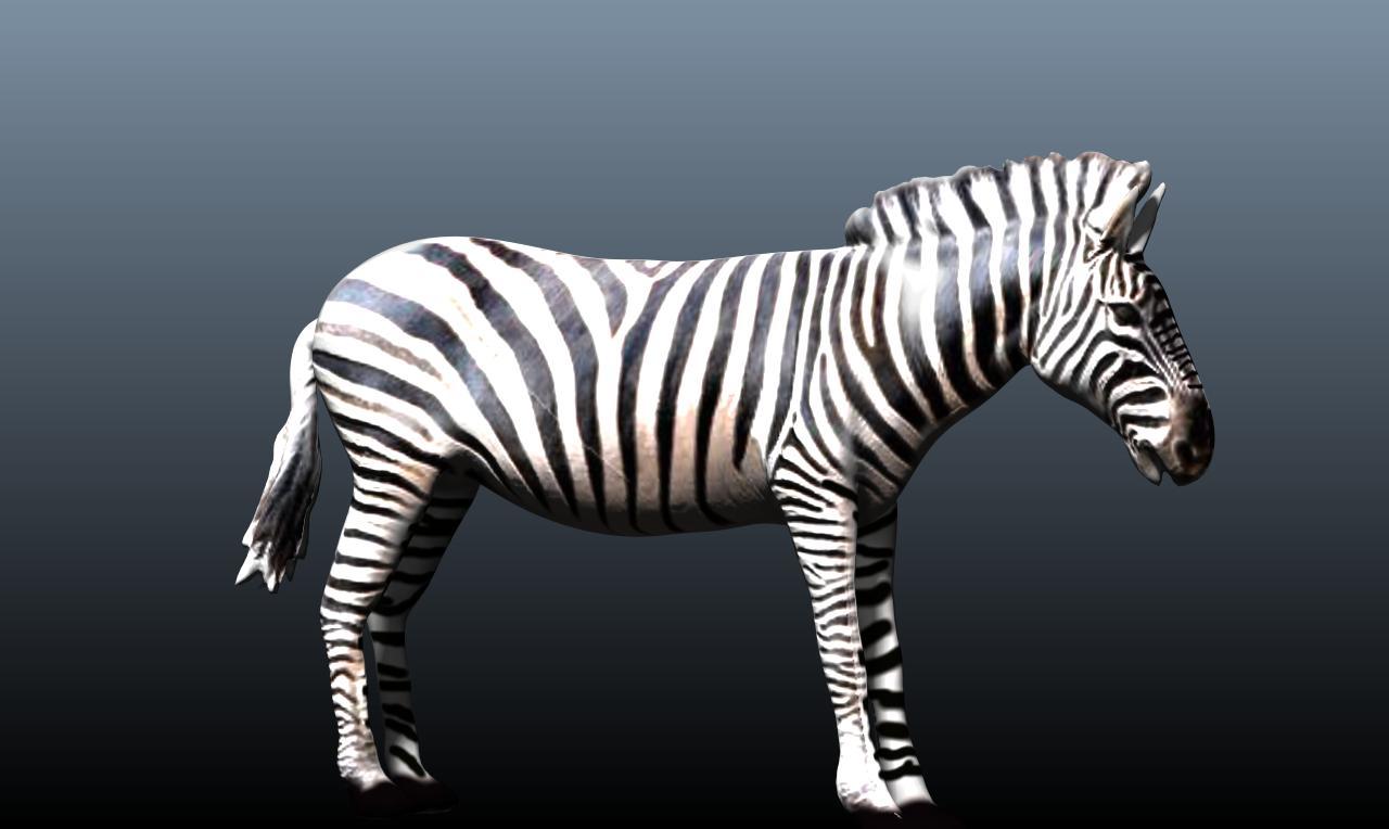 zebra v3 3d model obj 148213