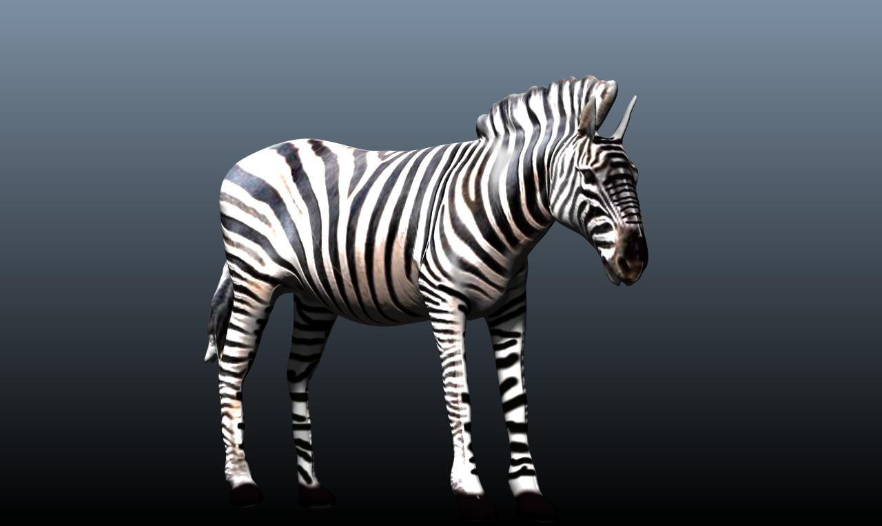 zebra v3 3d model obj 148214