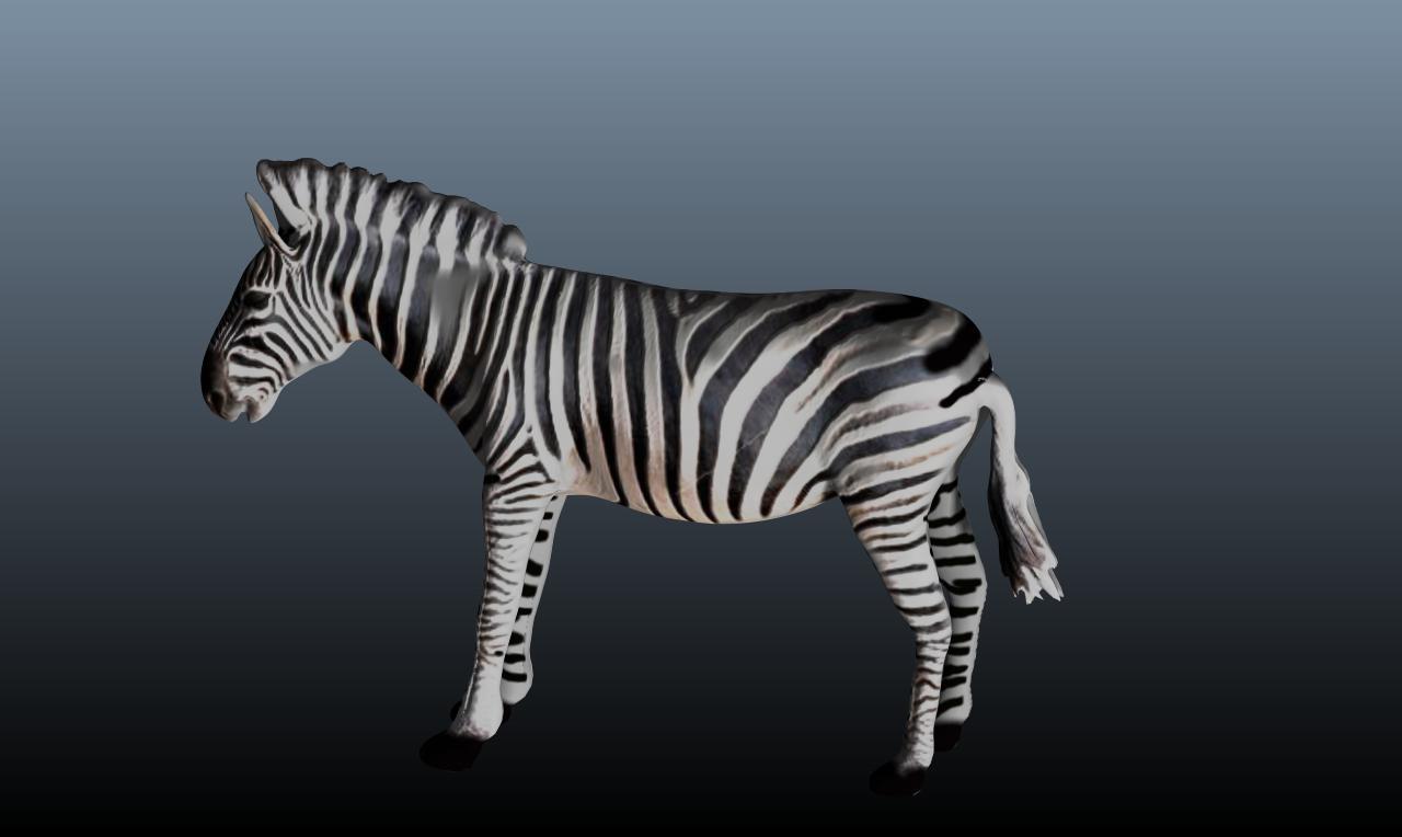 zebra v3 3d model obj 148216