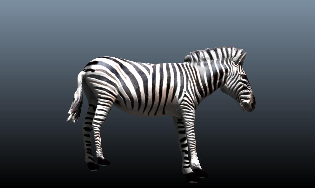 zebra v3 3d model obj 148217