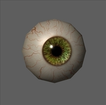 eye low poly textured ( 31.9KB jpg by 3D4buycom )