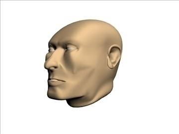 head model (male) 3d model 3ds 92617