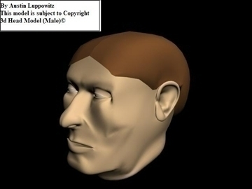 head model (male) 3d model 3ds 92618