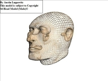 head model (male) 3d model 3ds 92620