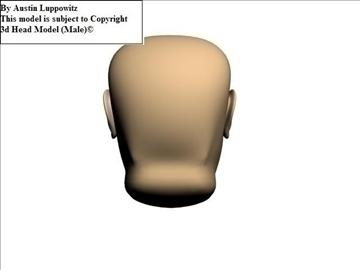 head model (male) 3d model 3ds 92621
