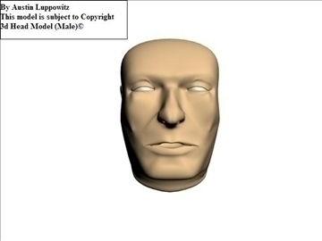 head model (male) 3d model 3ds 92622