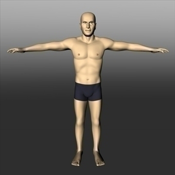male white 3d model 3ds dxf fbx c4d x obj 89746