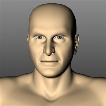male white 3d model 3ds dxf fbx c4d x obj 89749
