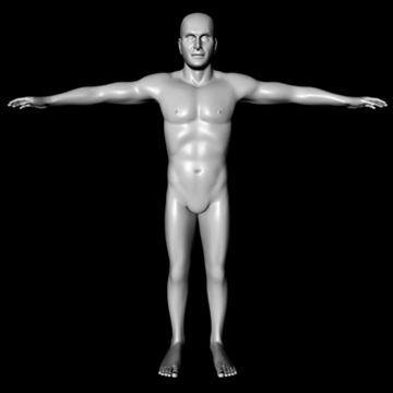 male white 3d model 3ds dxf fbx c4d x obj 89751