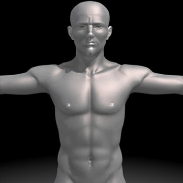 realistic human male 3d model 3ds max obj 87135