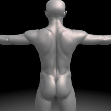 realistic human male 3d model 3ds max obj 87138