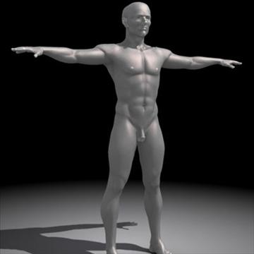 realistic human male 3d model 3ds max obj 87139