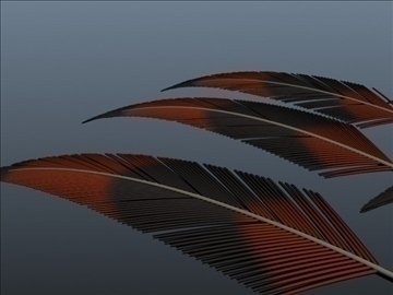 exotic feathers 001 3d model 3ds max obj 102507