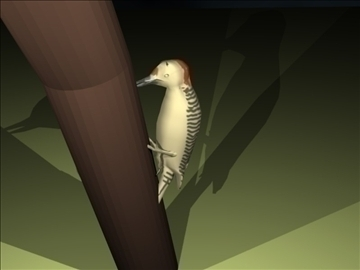 woodpecker 3d model blend obj 91806