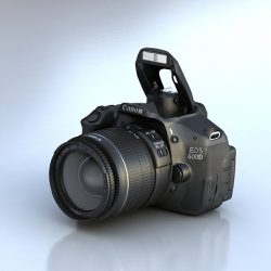 Canon 600D ( 159.88KB jpg by S.E )