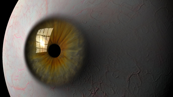 eyeball 3d model ma mb tiff 124313