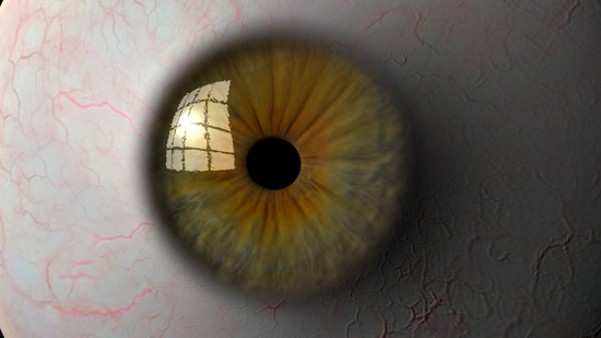 eyeball 3d model ma mb tiff 124315