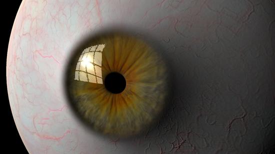 eyeball 3d model ma mb tiff 124317