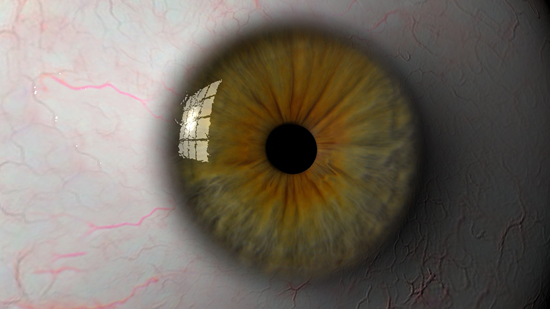 Eyeball 3d model ma mb tif tiff 124319