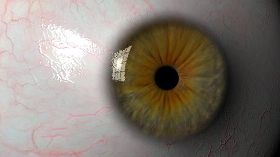 Eyeball 3d model ma mb tif tiff 124314