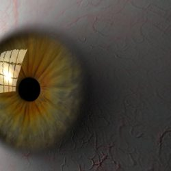 Eyeball ( 106.44KB jpg by StanleyMedia )