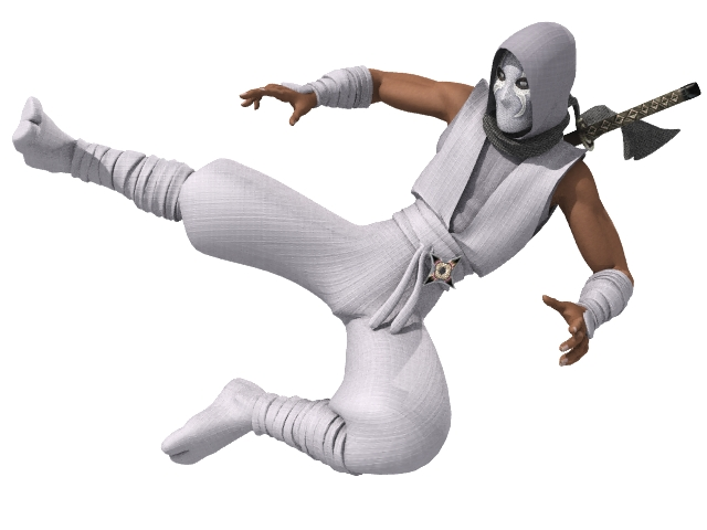 ninja rigged 3d model lwo 154676