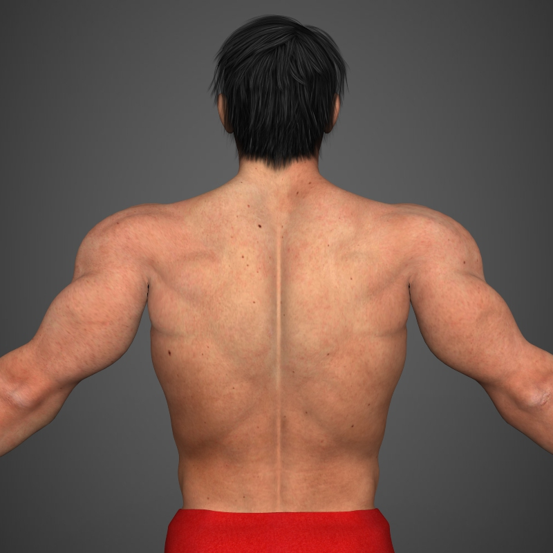 realistic bodybuilder man 3d model 3ds max fbx c4d l3d ma mb texture obj 161346