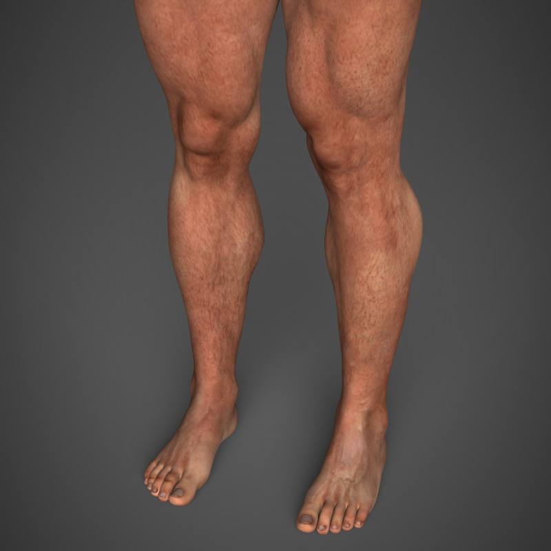 Realistic Bodybuilder Man ( 151.75KB jpg by cghuman )