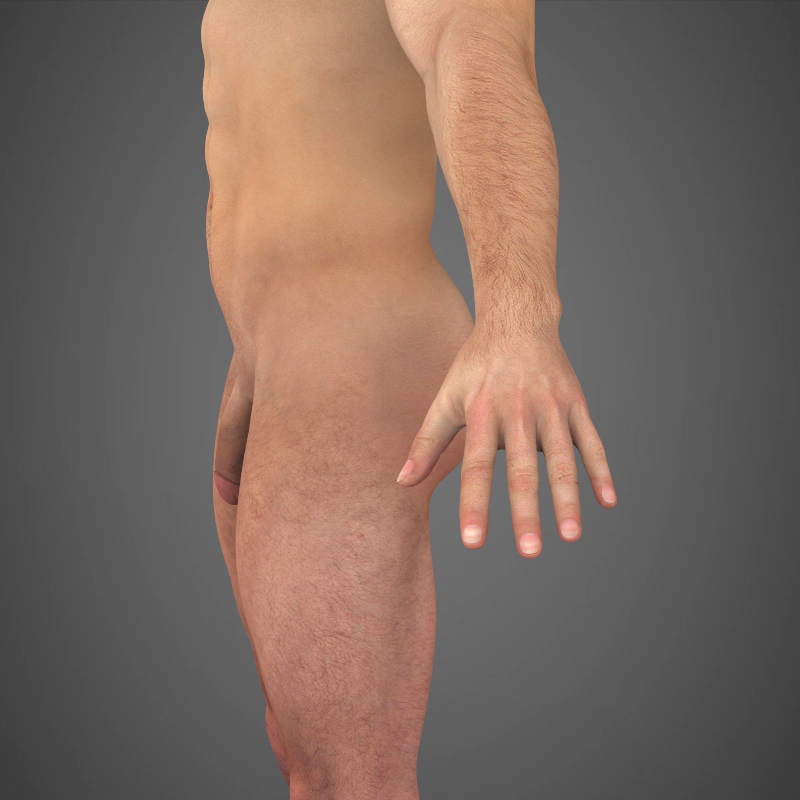 Realistic Young Muscular Man ( 269.37KB jpg by cghuman )