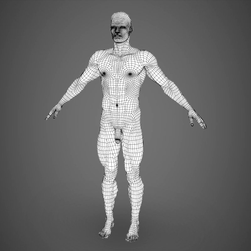 Realistic Young Muscular Man ( 223.65KB jpg by cghuman )